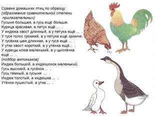 Сравни домашних птиц по образцу: (образование сравнительной степени прилагат
