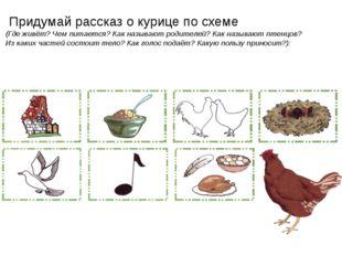 Придумай рассказ о курице по схеме (Где живёт? Чем питается? Как называют ро