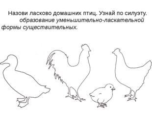 Назови ласково домашних птиц. Узнай по силуэту. образование уменьшительно-ла