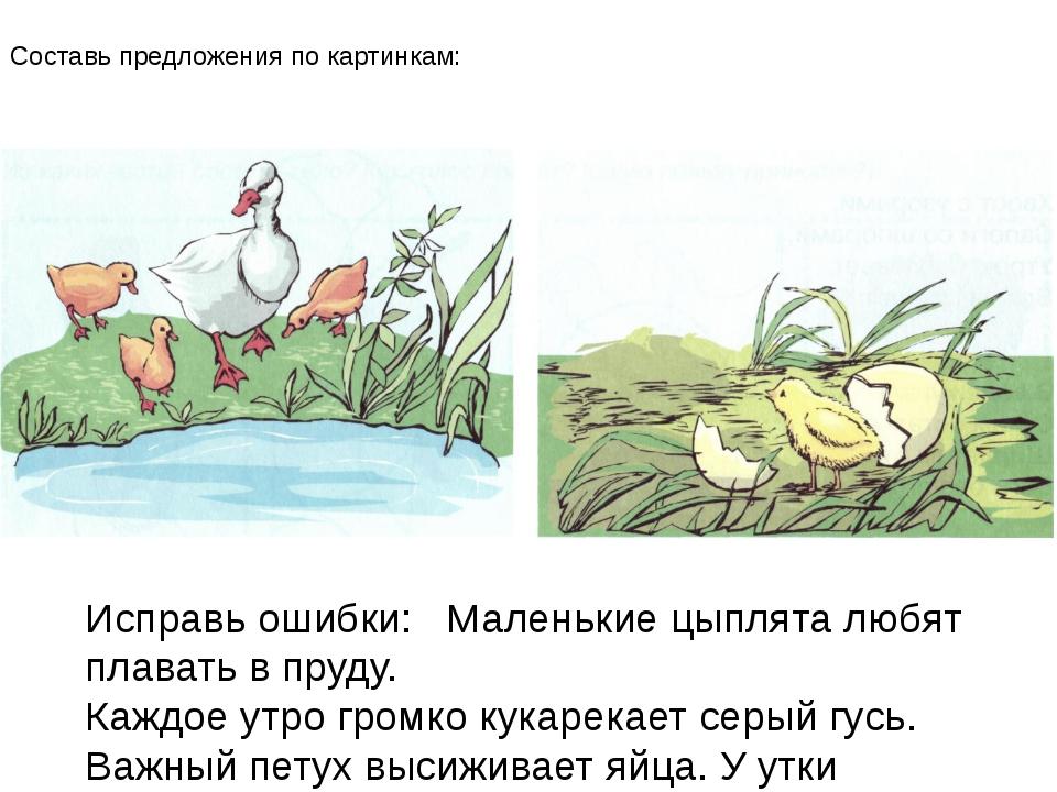 Составь предложения по картинкам: Исправь ошибки: Маленькие цыплята любят пла...