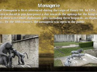Menagerie The Royal Menagerie is first referenced during the reign of Henry