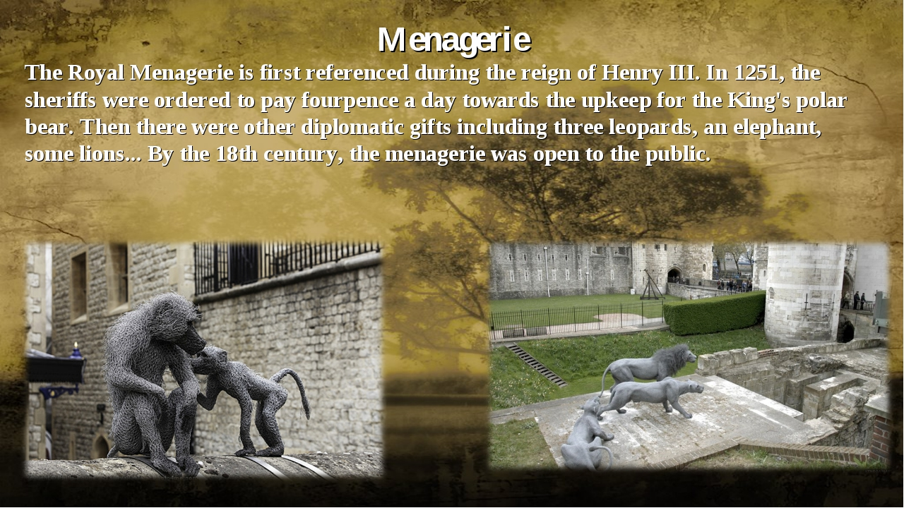 Menagerie The Royal Menagerie is first referenced during the reign of Henry...