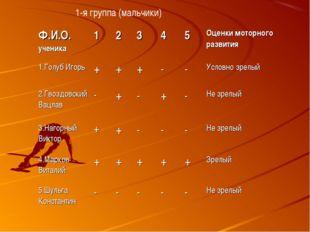 1-я группа (мальчики) Ф.И.О. ученика12345Оценки моторного развития 1.Го