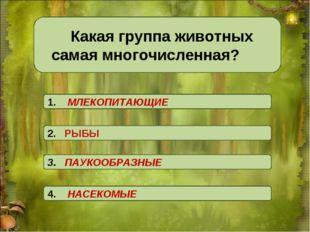 Какая группа животных самая многочисленная? 3. ПАУКООБРАЗНЫЕ 2. РЫБЫ 4. НАС