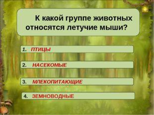 К какой группе животных относятся летучие мыши? 1. ПТИЦЫ 4. ЗЕМНОВОДНЫЕ 3.