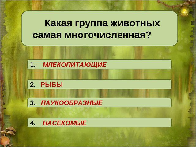 Какая группа животных самая многочисленная? 3. ПАУКООБРАЗНЫЕ 2. РЫБЫ 4. НАС...