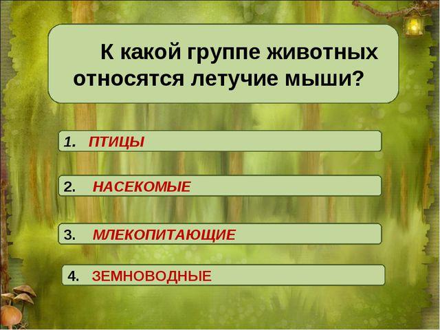 К какой группе животных относятся летучие мыши? 1. ПТИЦЫ 4. ЗЕМНОВОДНЫЕ 3....