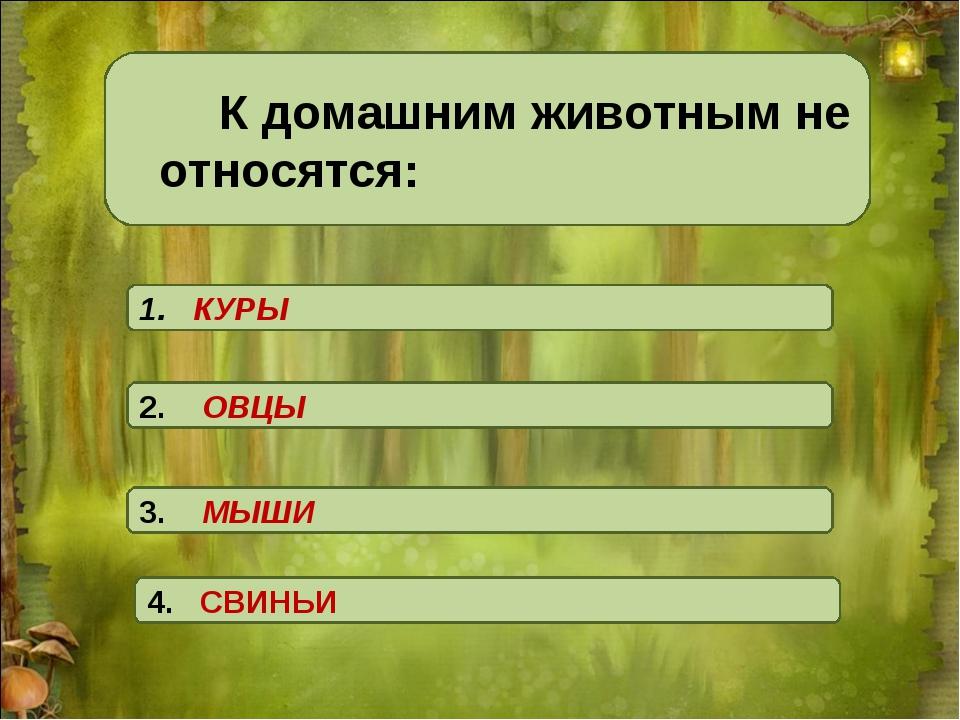 К домашним животным не относятся: 1. КУРЫ 4. СВИНЬИ 3. МЫШИ 2. ОВЦЫ