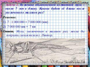 Задача 2. Величина обыкновенной комнатной мухи – около 7 мм в длину. Какова б
