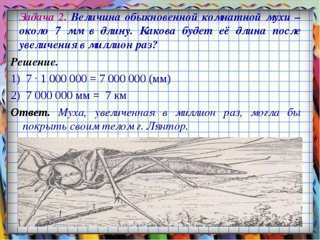 Задача 2. Величина обыкновенной комнатной мухи – около 7 мм в длину. Какова б...