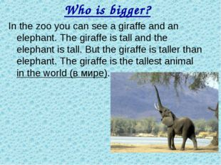 Who is bigger? In the zoo you can see a giraffe and an elephant. The giraffe