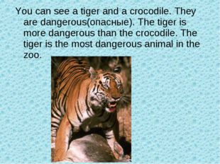 You can see a tiger and a crocodile. They are dangerous(опасные). The tiger i