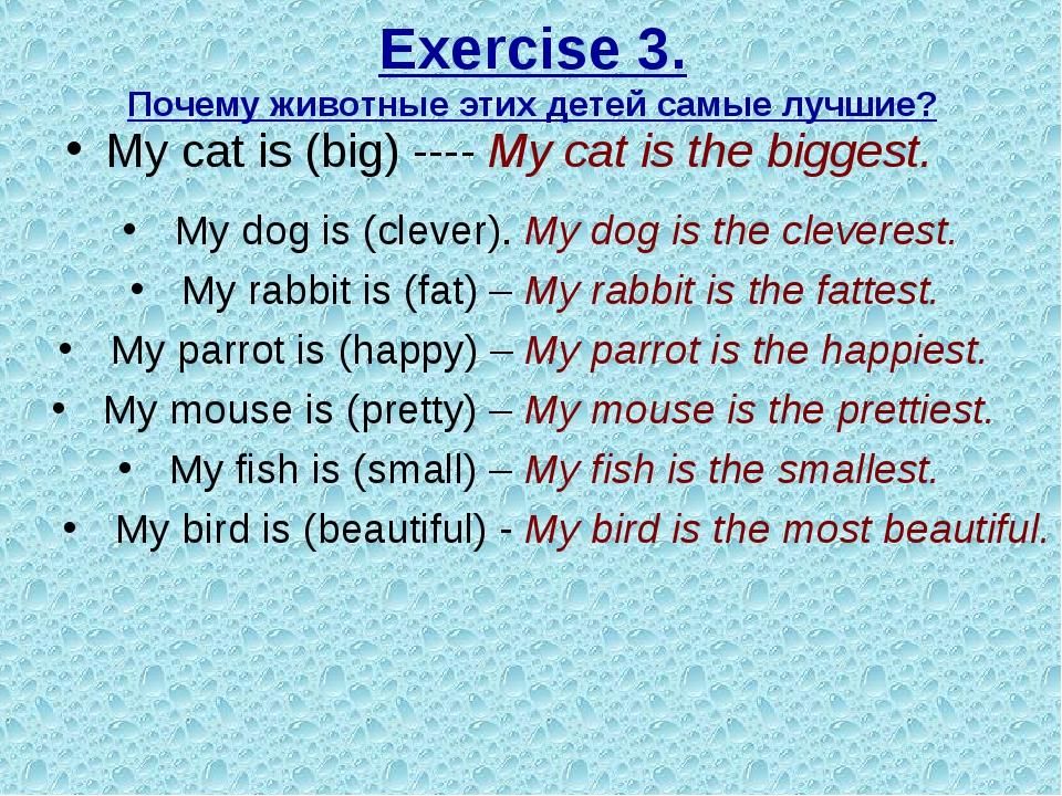 Exercise 3. Почему животные этих детей самые лучшие? My cat is (big) ---- My...