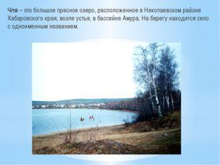 Чля – это большое пресное озеро, расположенное в Николаевском районе Хабаровс