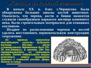 Жилище из костей мамонта В начале XX в. близ г.Чернигова были обнаружены бол