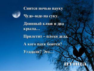 Снится ночью пауку Чудо–юдо на суку. Длинный клюв и два крыла… Прилетит – пло