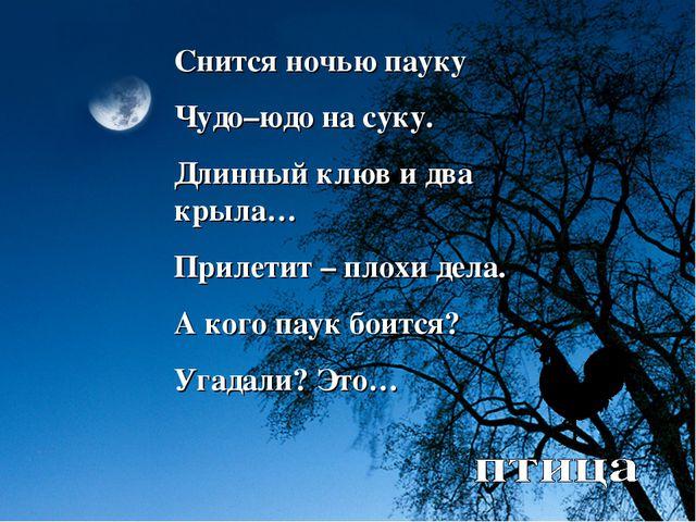 Снится ночью пауку Чудо–юдо на суку. Длинный клюв и два крыла… Прилетит – пло...