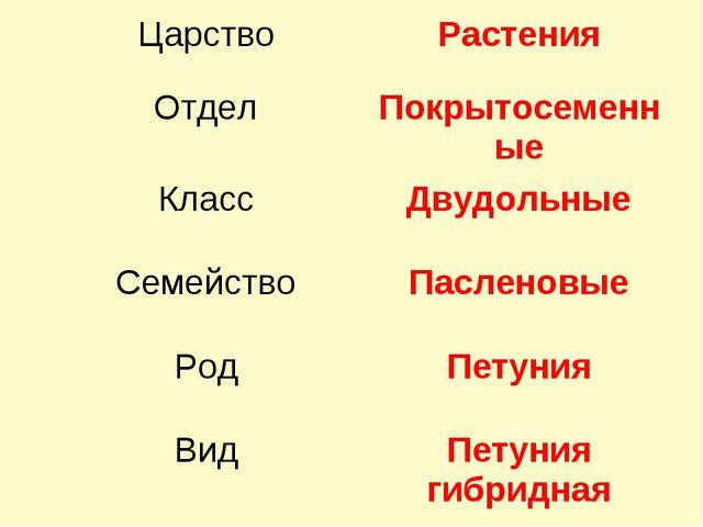 ЦарствоРастения ОтделПокрытосеменные КлассДвудольные СемействоПасленовые...