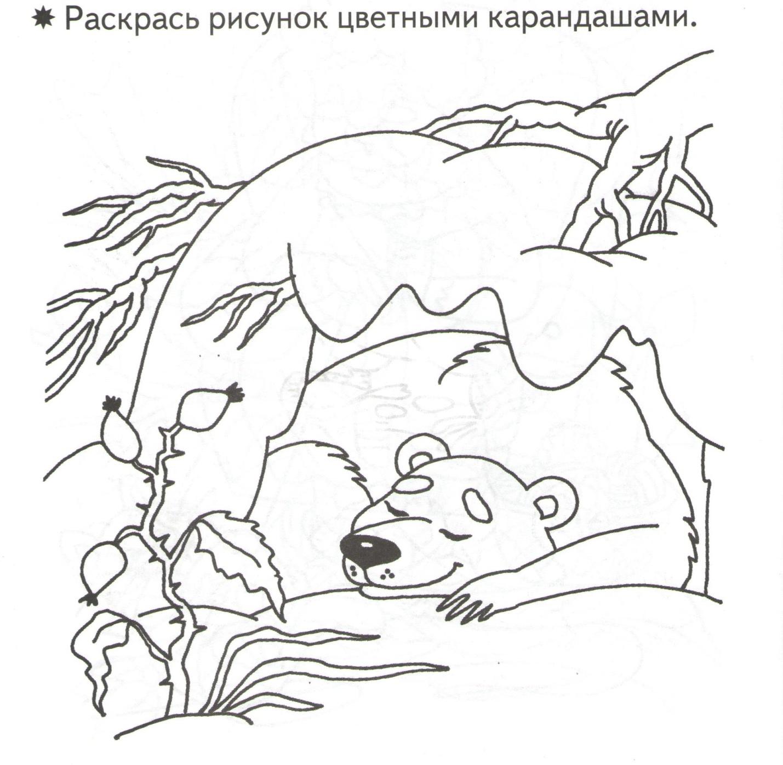 C:\Users\sisadmin\Desktop\развитие связной речи и творческого воображения\2016-02-26 про медведя\про медведя 001.jpg