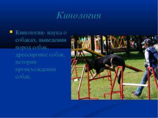 Кинология Кинология- наука о собаках, выведении пород собак, дрессировке соба