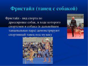 Фристайл (танец с собакой) Фристайл - вид спорта по дрессировке собак, в ходе