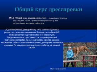 Общий курс дрессировки ОКД (Общий курс дрессировки собак) —российская система