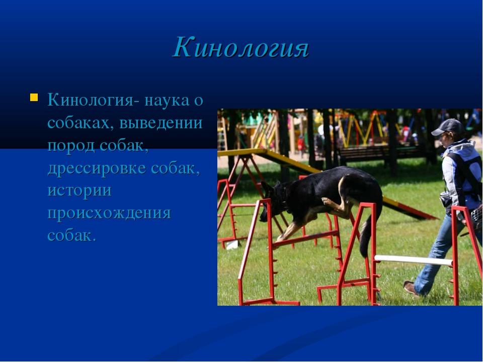 Кинология Кинология- наука о собаках, выведении пород собак, дрессировке соба...