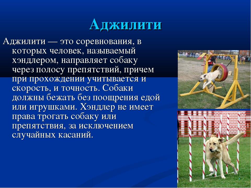 Аджилити Аджилити— это соревнования, в которых человек, называемый хэндлером...