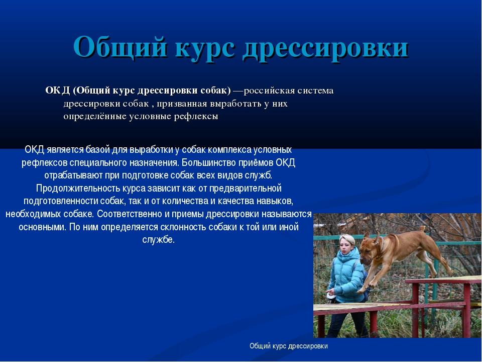 Общий курс дрессировки ОКД (Общий курс дрессировки собак) —российская система...