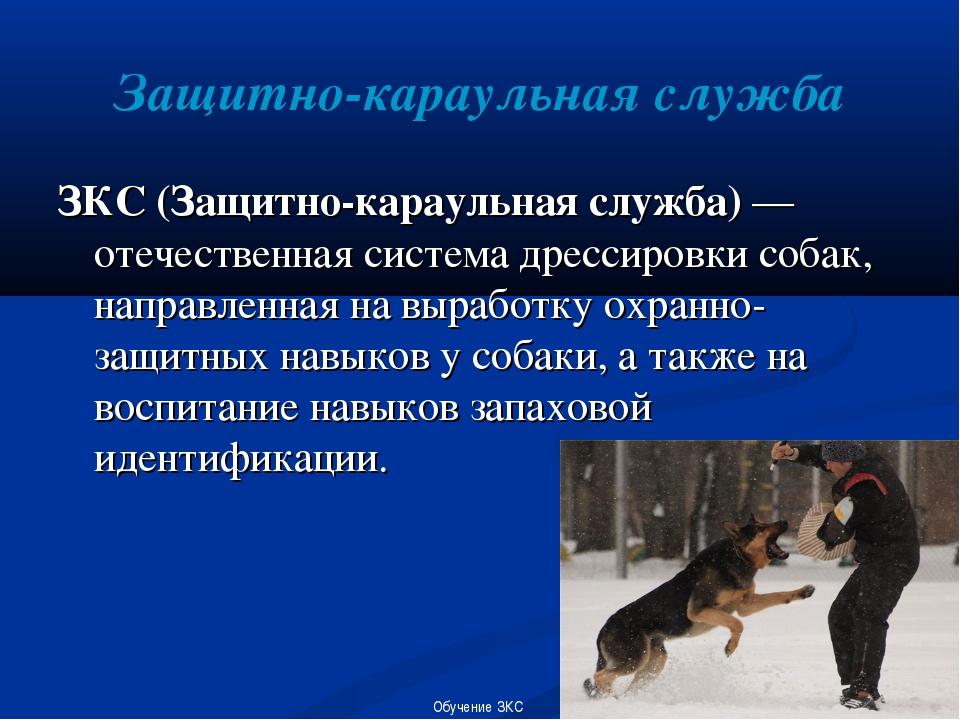 Защитно-караульная служба ЗКС (Защитно-караульная служба) — отечественная сис...