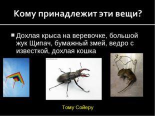 Дохлая крыса на веревочке, большой жук Щипач, бумажный змей, ведро с известко