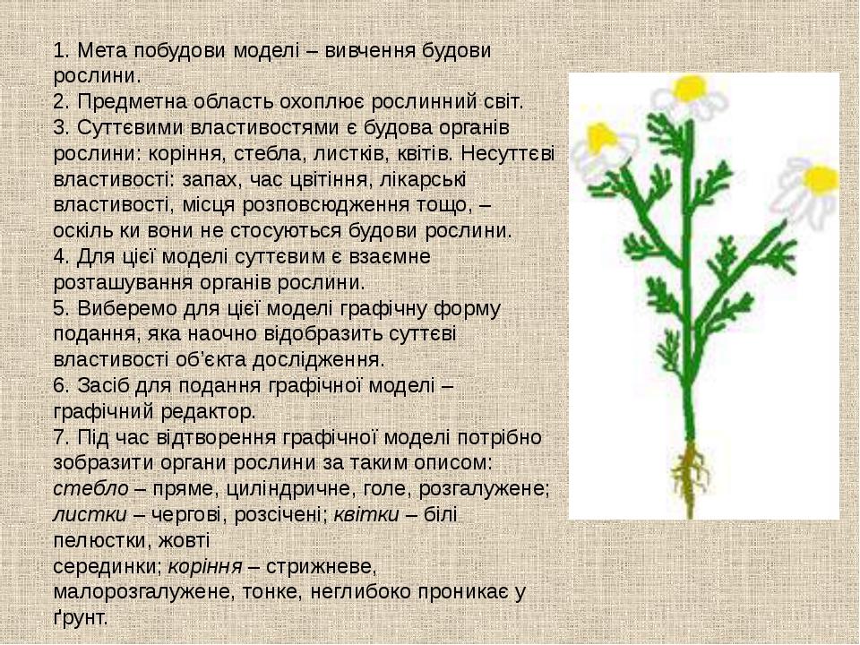 1. Мета побудови моделі – вивчення будови рослини. 2. Предметна область охопл...