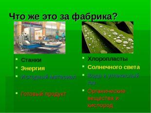 Что же это за фабрика? Станки Энергия Исходный материал Готовый продукт Хлоро