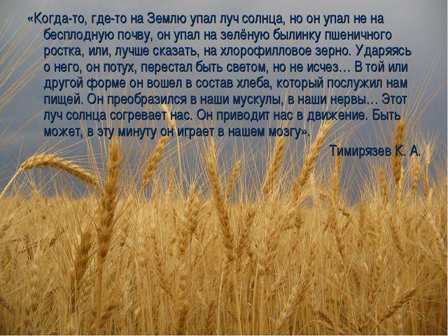 «Когда-то, где-то на Землю упал луч солнца, но он упал не на бесплодную почву...