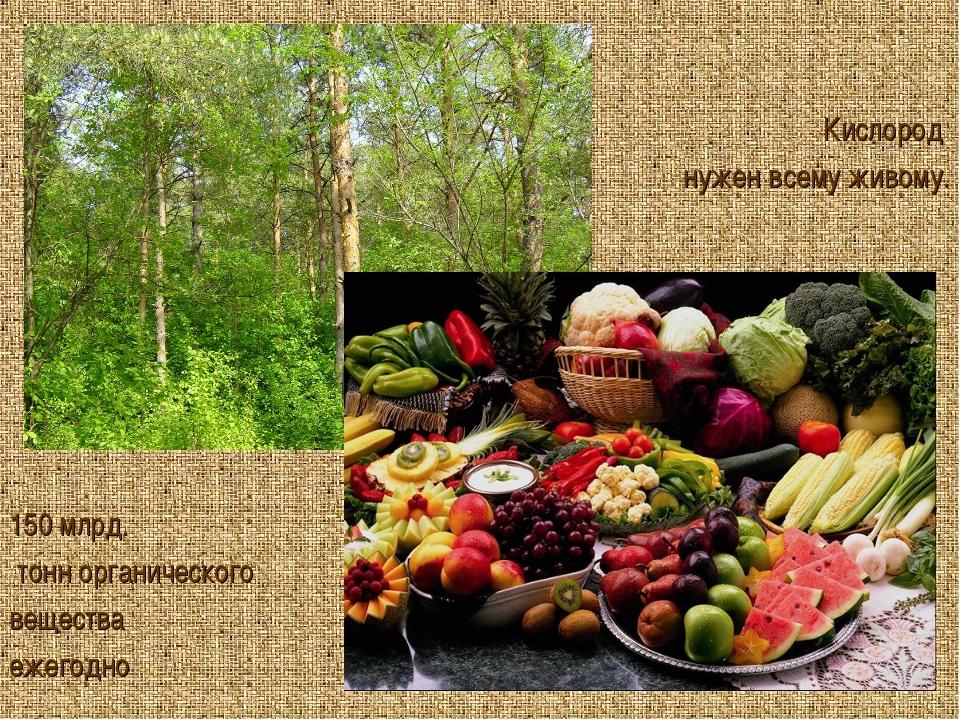 150 млрд. тонн органического вещества ежегодно Кислород нужен всему живому.