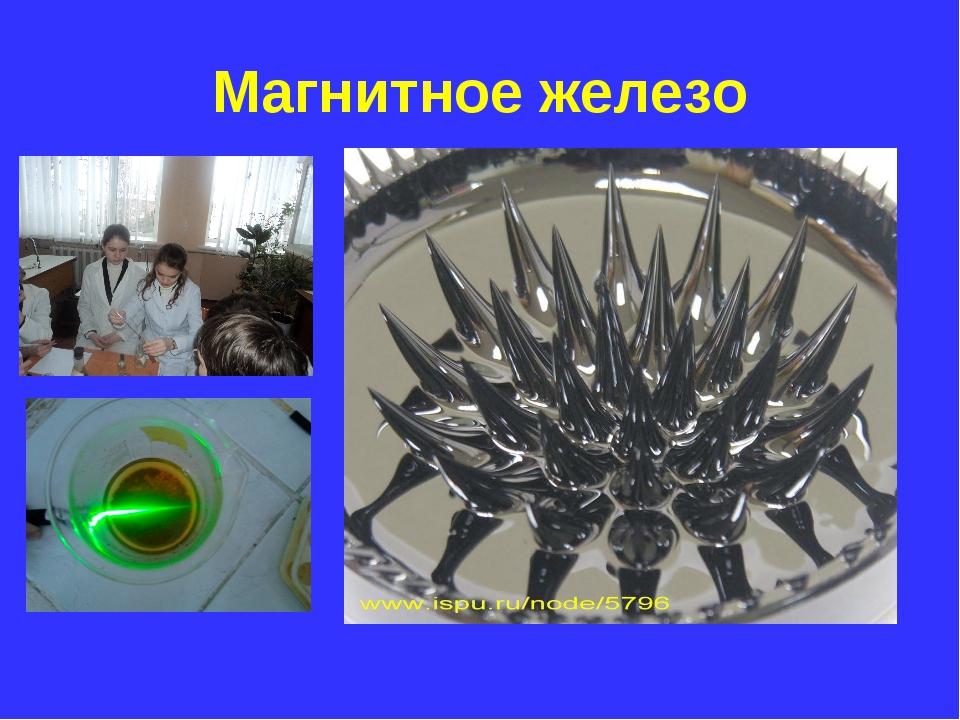 Магнитное железо