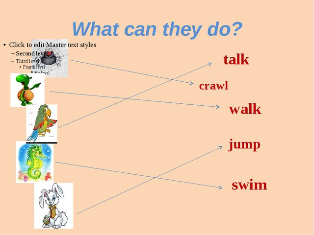 What can they do? crawl jump walk talk swim