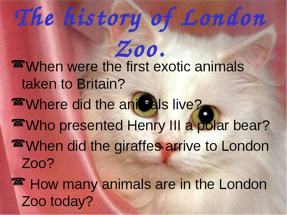 The history of London Zoo. When were the first exotic animals taken to Britai...