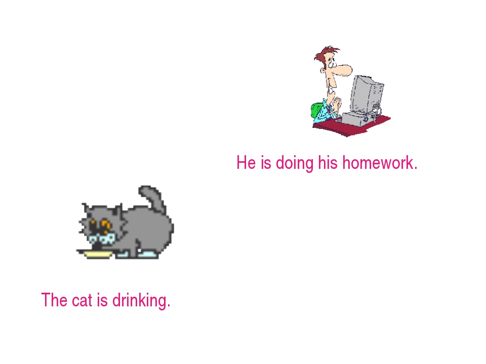 He is doing his homework. The cat is drinking.