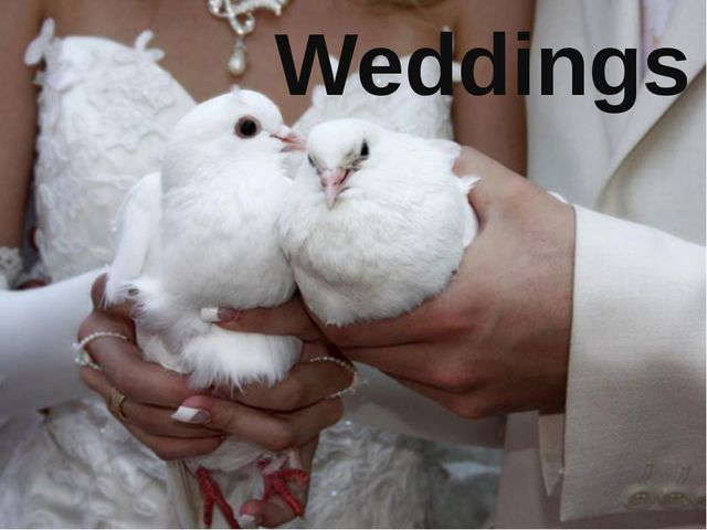 Weddings