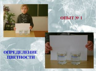 ОПЫТ № 1 ОПРЕДЕЛЕНИЕ ЦВЕТНОСТИ