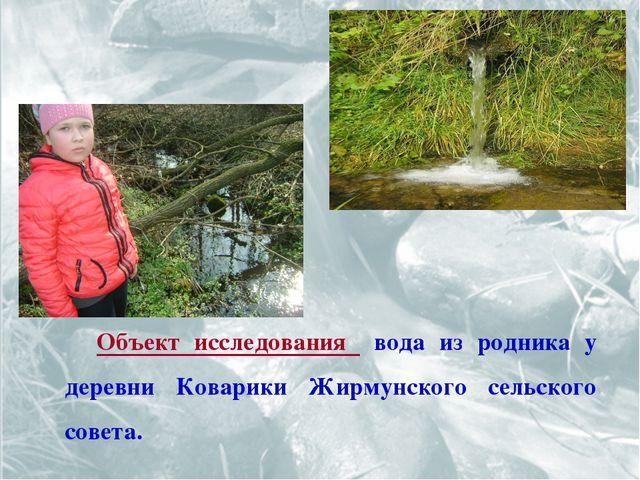 Объект исследования вода из родника у деревни Коварики Жирмунского сельского...