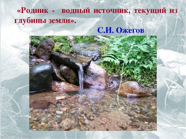 «Родник - водный источник, текущий из глубины земли». С.И. Ожегов