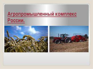 Агропромышленный комплекс России.