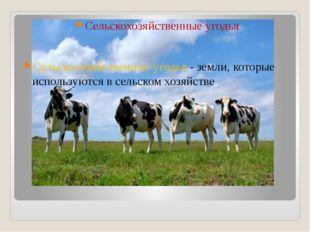 Сельскохозяйственные угодья Сельскохозяйственные угодья - земли, которые испо