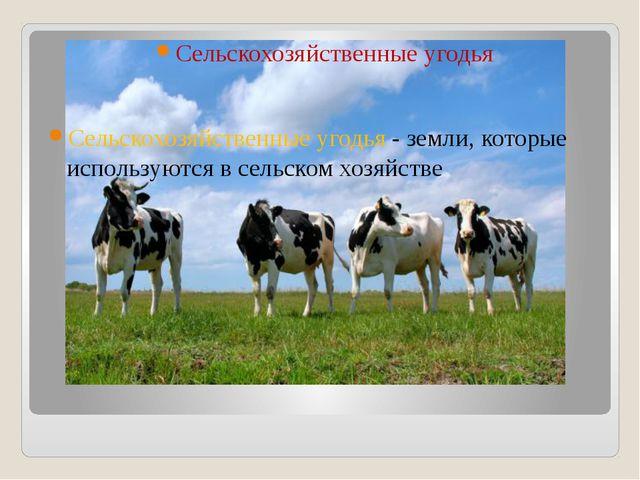 Сельскохозяйственные угодья Сельскохозяйственные угодья - земли, которые испо...