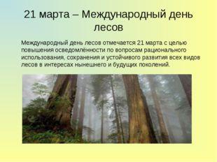 21 марта – Международный день лесов Международный день лесов отмечается 21 м
