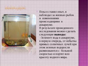 Пока я ставил опыт, я наблюдал за жизнью рыбок и изменениями происходящими в