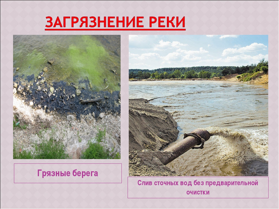 Грязные берега Слив сточных вод без предварительной очистки