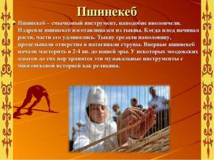 Пшинекеб Пшинекеб – смычковый инструмент, наподобие виолончели. Издревле пниш